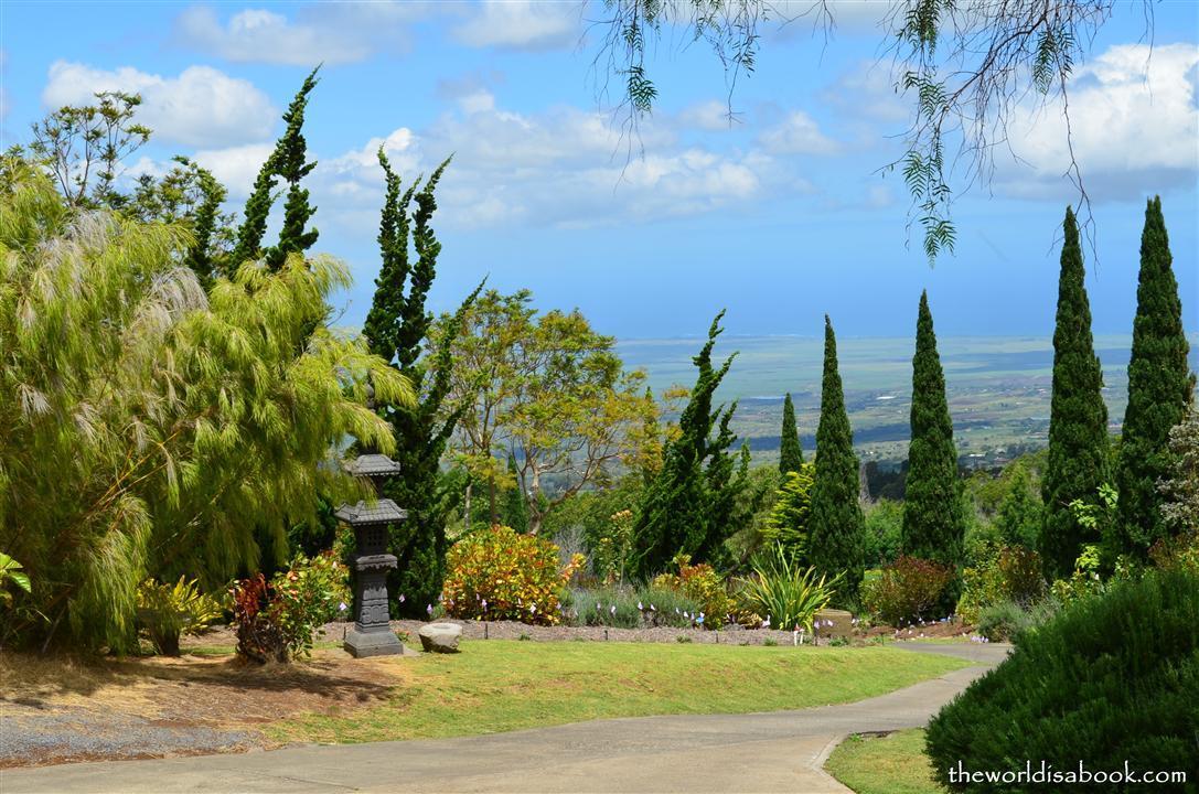 Alii Kula Lavender garden