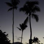 Maui Lodging: Maui Seaside Hotel