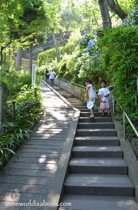 Hasedera stairs