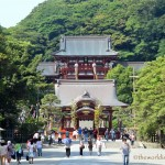 Visiting the Great Buddha of Kamakura with Kids