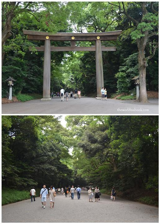 meiji Shrine torii entrance