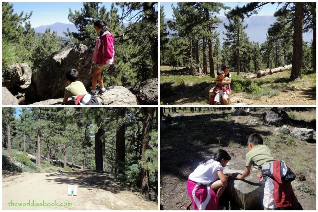 Exploring Snow Summit trails