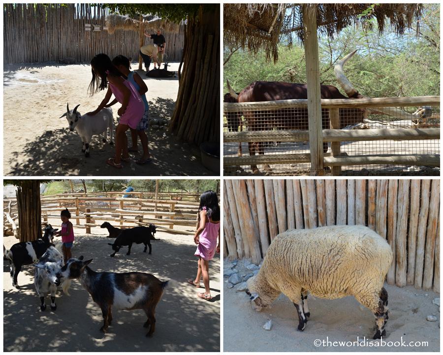 Petting Kraal corral Living Desert