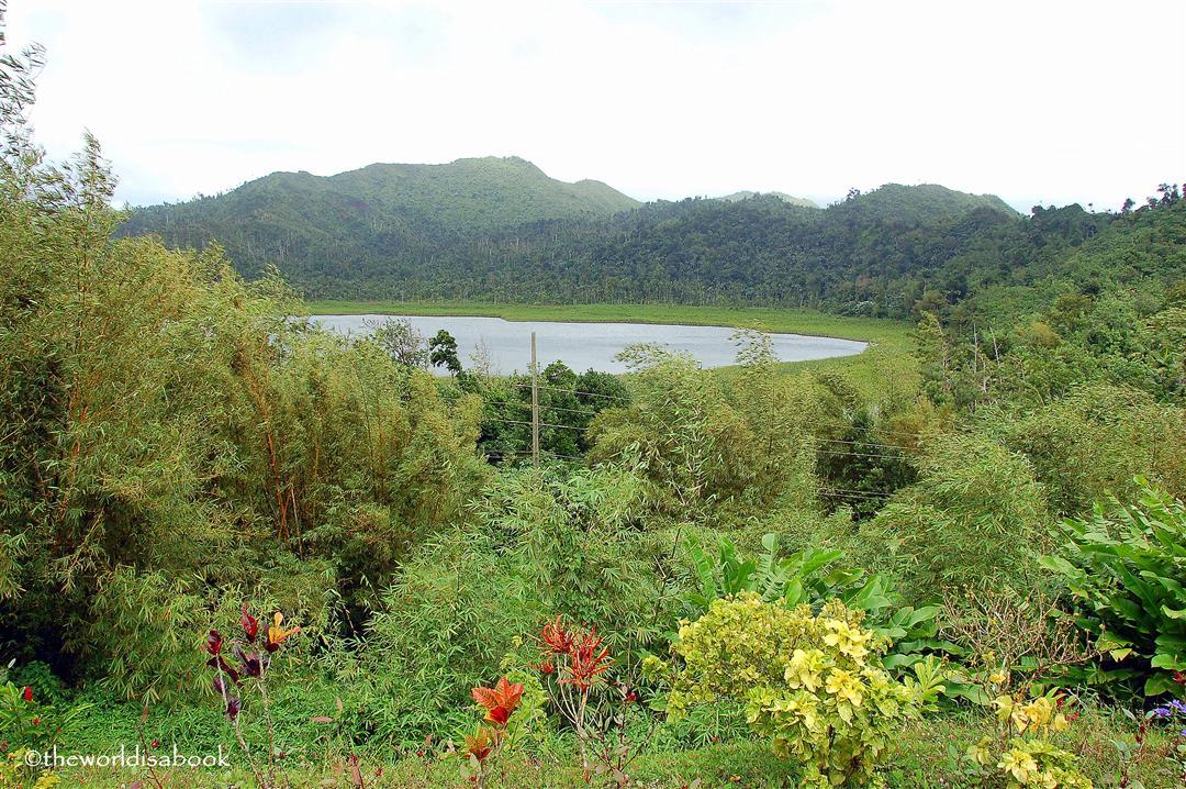 Grand Etang National park Grenada
