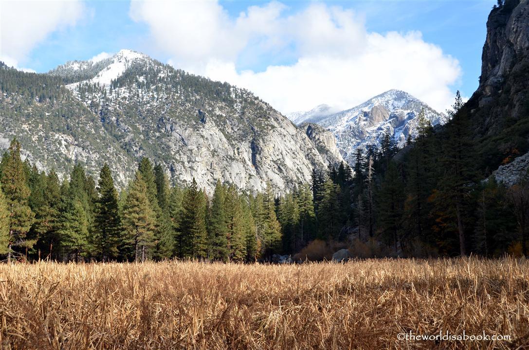 Zumwalt Meadow