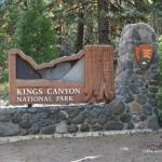 Sequoia/King's Canyon National Park Junior Rangers