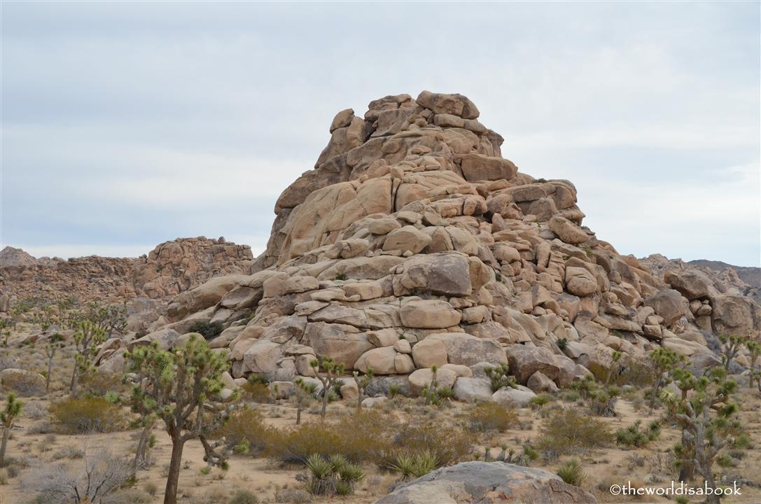Joshua tree boulder pile