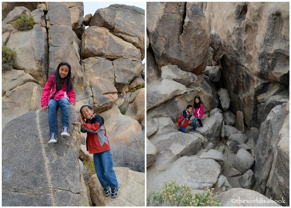Joshua tree national park with kids rock climbing