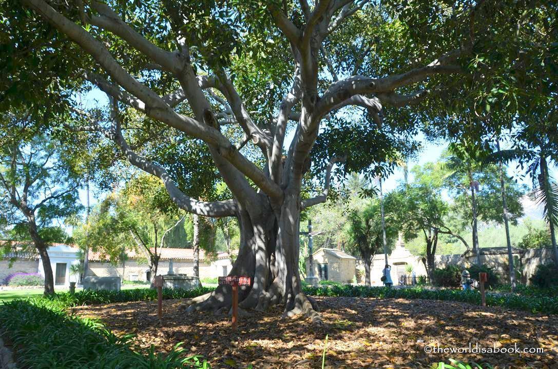 Mission Santa Barbara cemetary