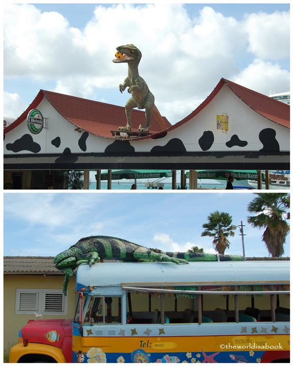 Aruba rooftop reptiles