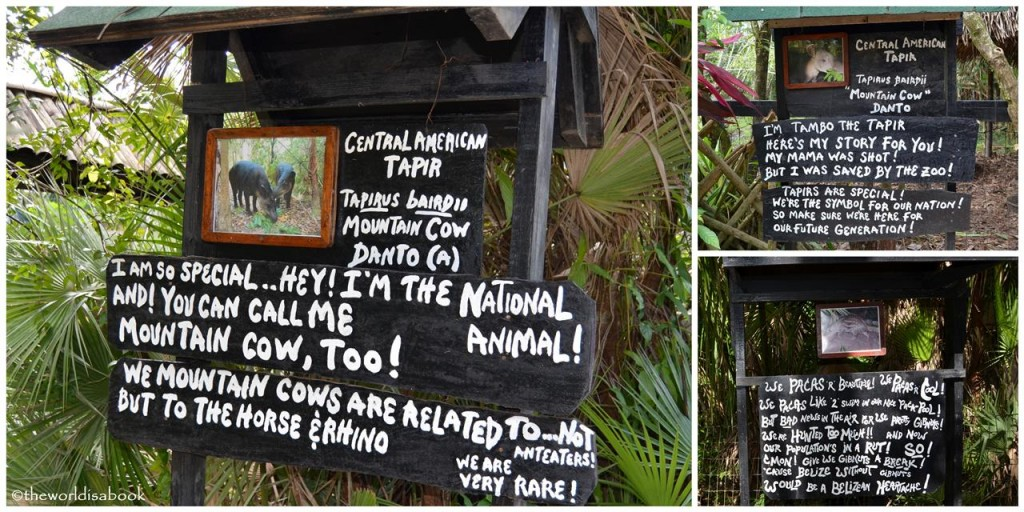 Belize zoo signs