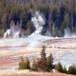 Geyser Gazing at Yellowstone National Park