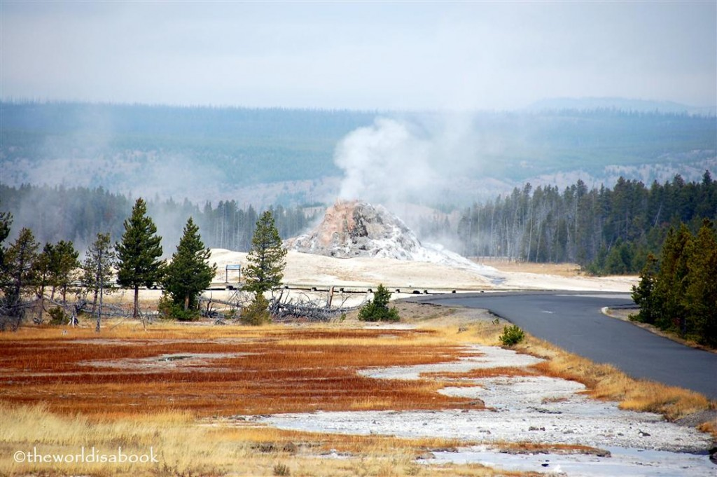 yellowstone national park white dome geyser image