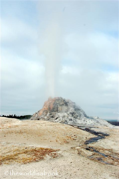 yellowstone white dome geyser erupting image