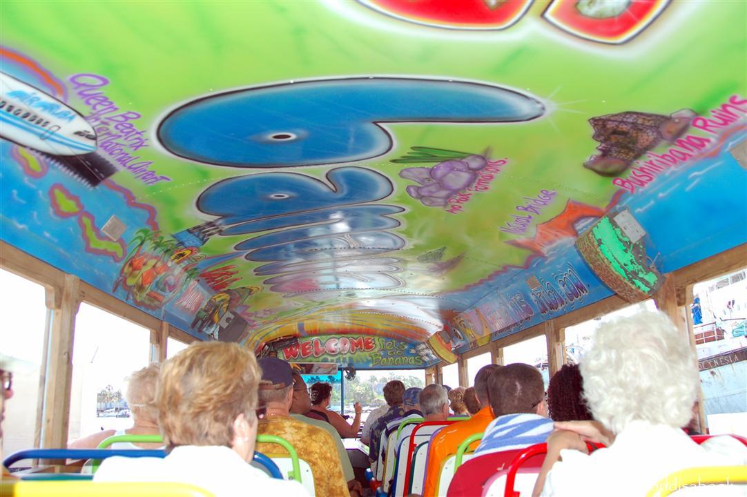 Aruba banana bus tour