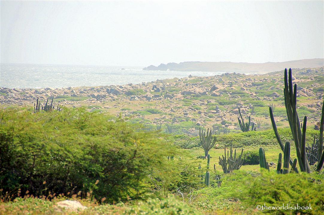 Aruba alto vista chapel view