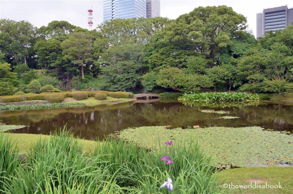 Tokyo Imperial gardens image picture