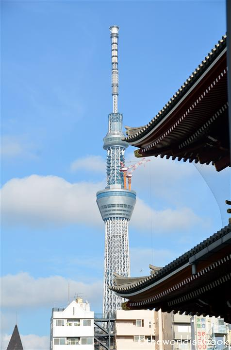 Tokyo sky tree with temple image picture