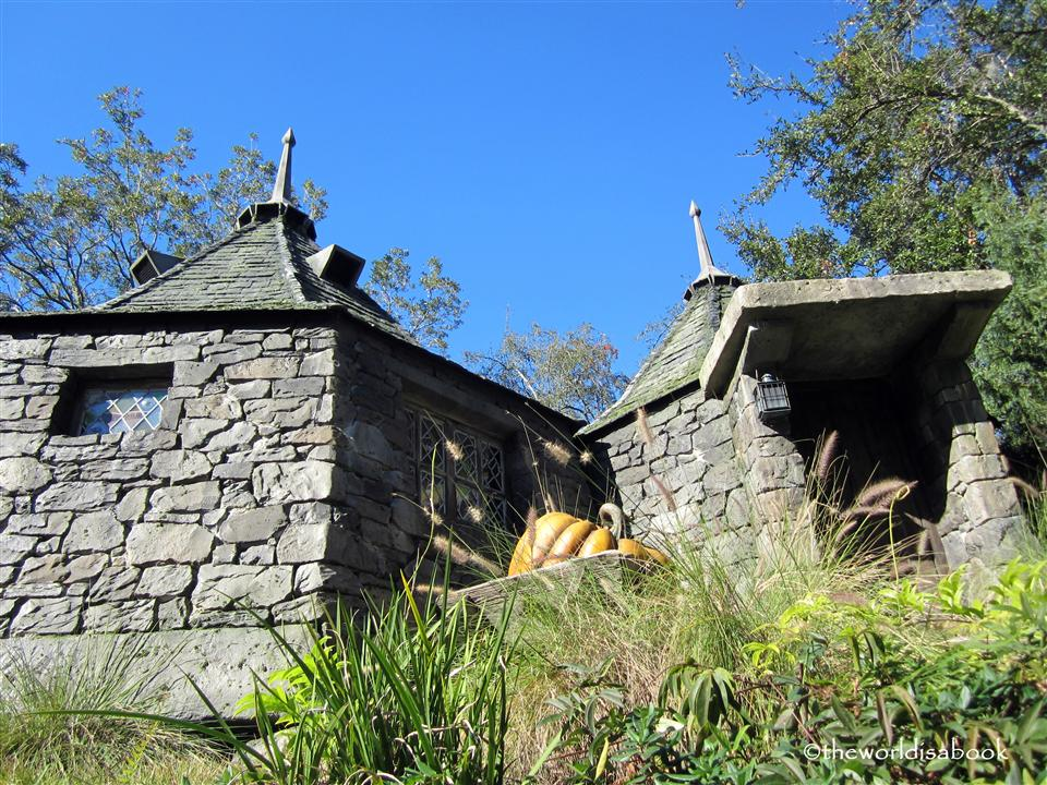 Wizarding World of Harry Potter hagrid's hut