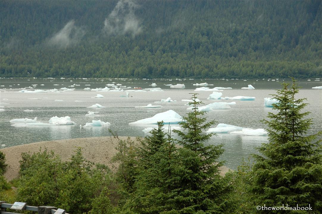 Mendenhall glacier icebergs
