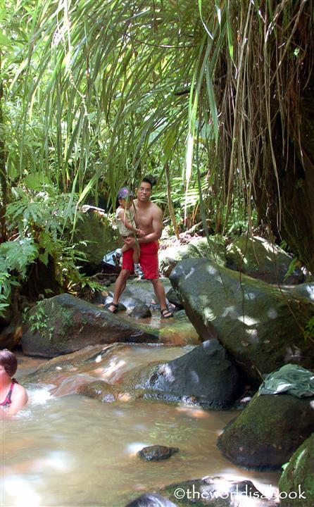 Natural pools Dominica trafalgar falls