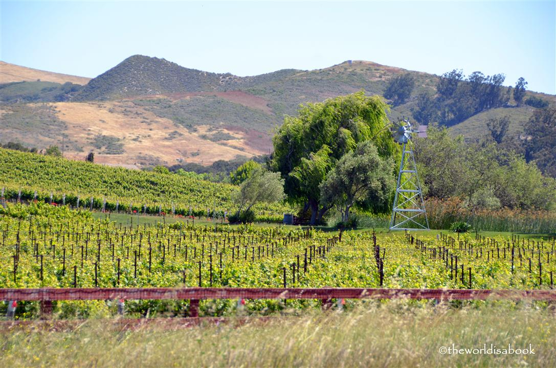 Santa Ynez Valley Solvang winery image