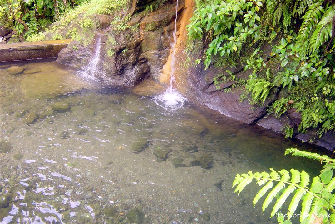 Ti Tou Gorge Dominica entrance