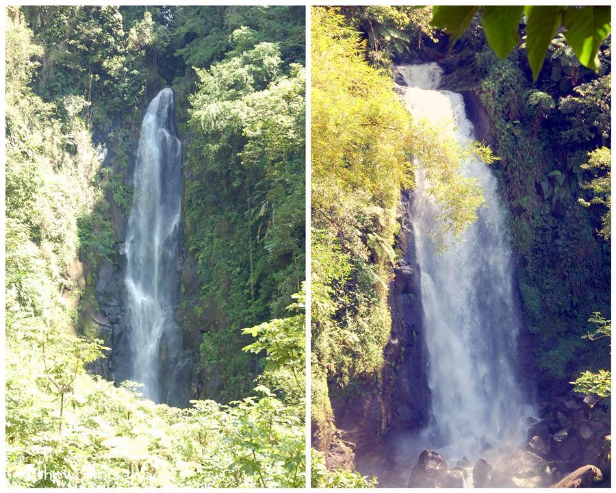 Dominica Trafalgar Falls image