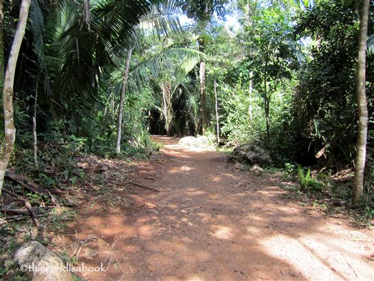 Belize cave tubing hike