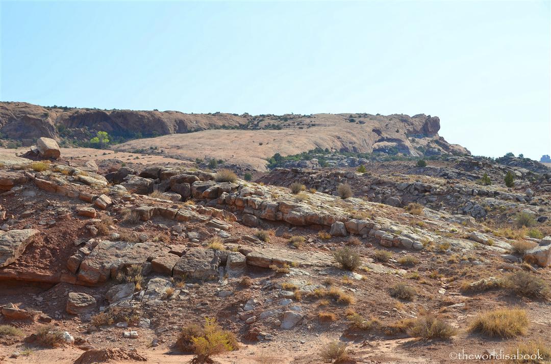 Delicate arch trail slickrock