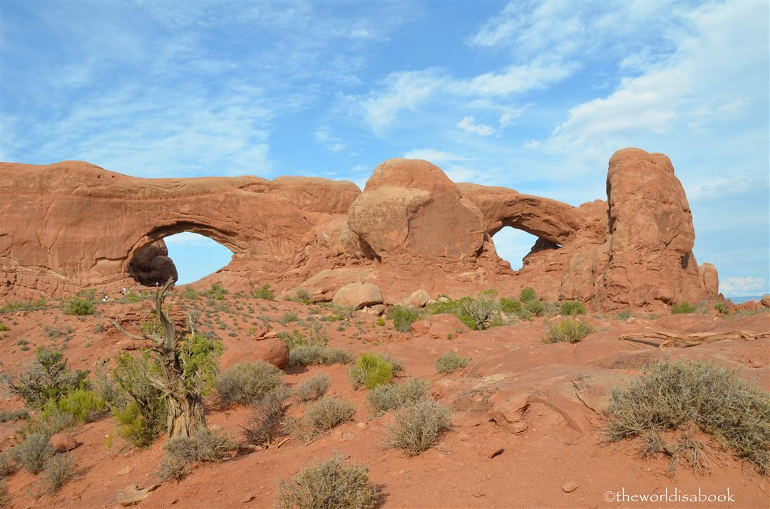 North and South Windows Arch