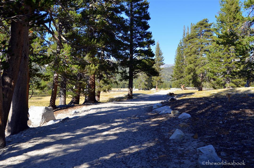 Soda Springs Trail