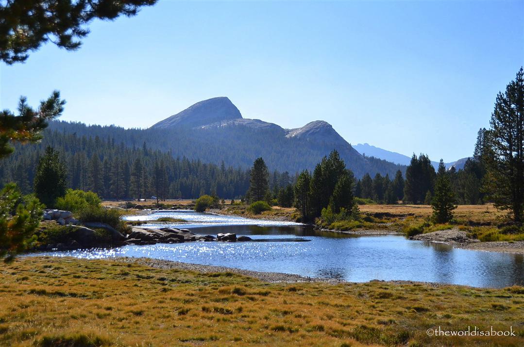 Tuolumne meadows river