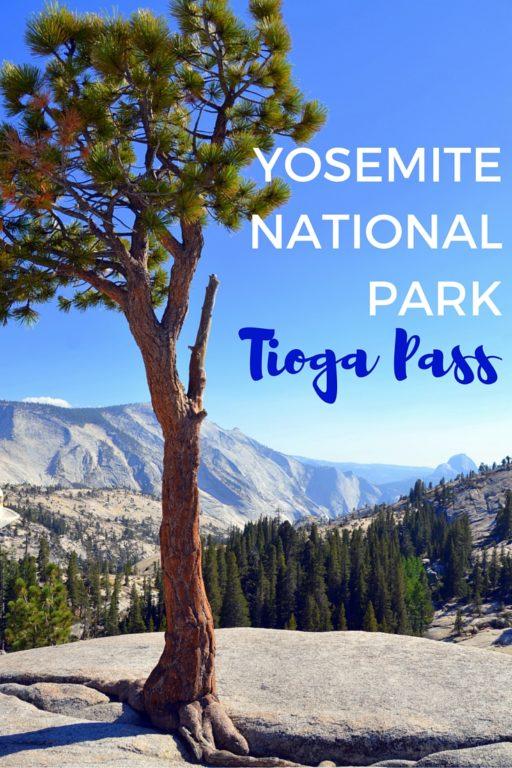 YOSEMITE NATIONAL PARK - Tioga Pass