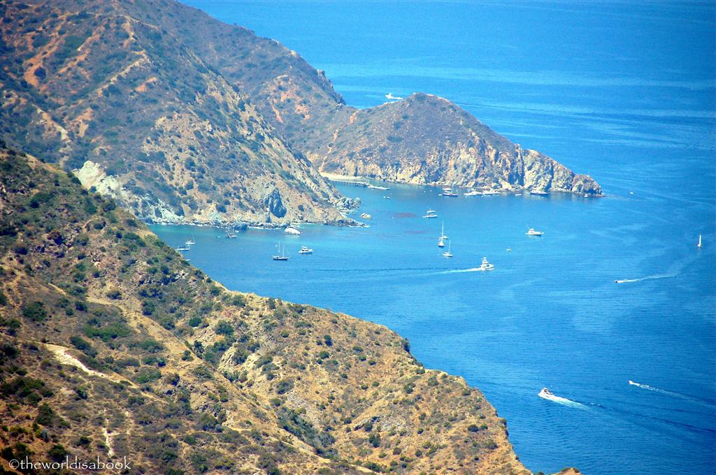 Catalina two islands harbor