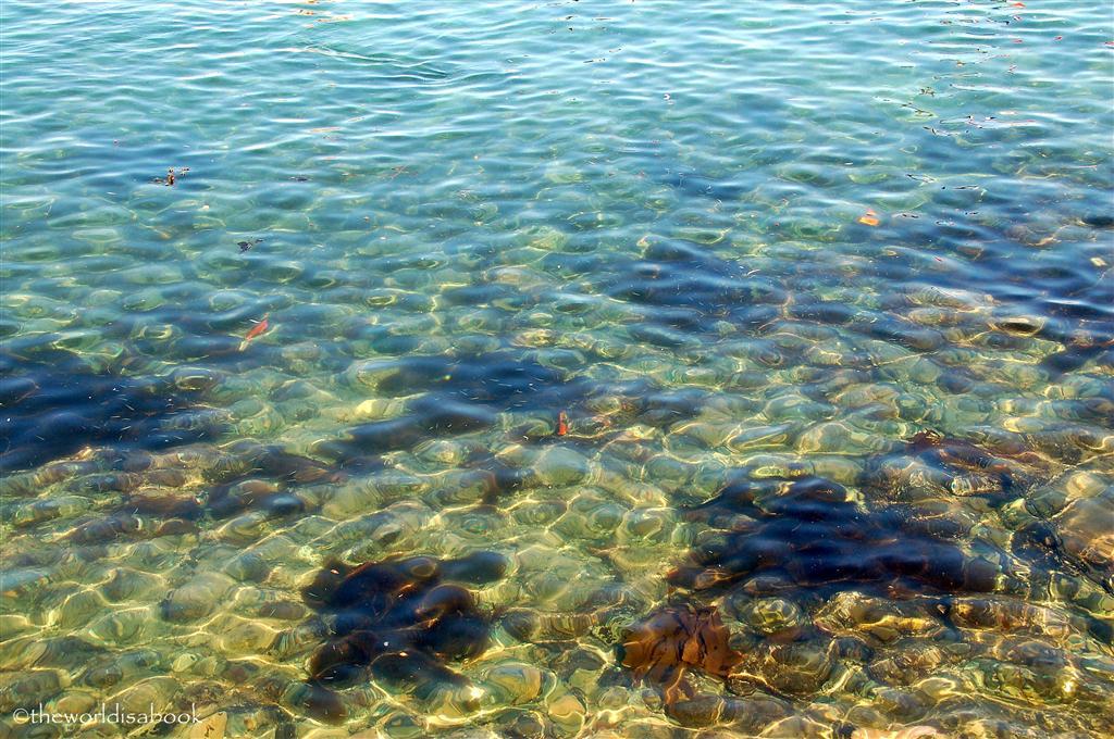 catalina island clear water
