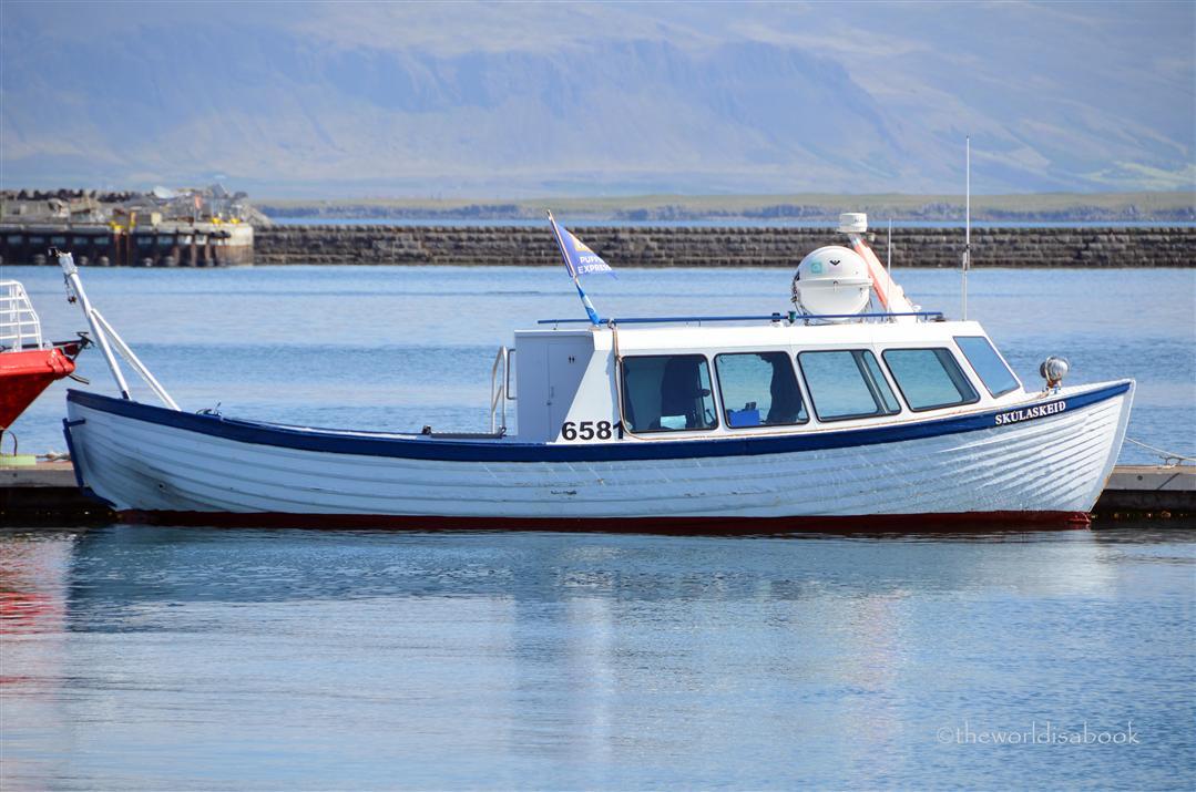 Iceland puffin express boat Skúlaskeið or Old Skúli