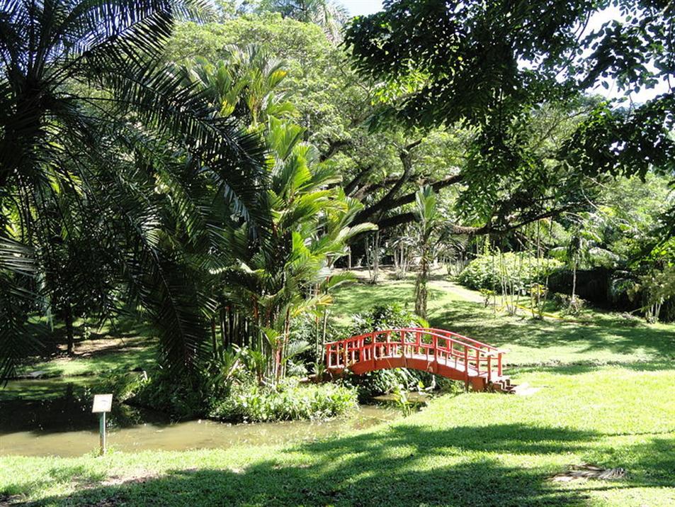 San Juan Botanical garden