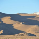 Exploring the Great Sand Dunes National Park with Kids