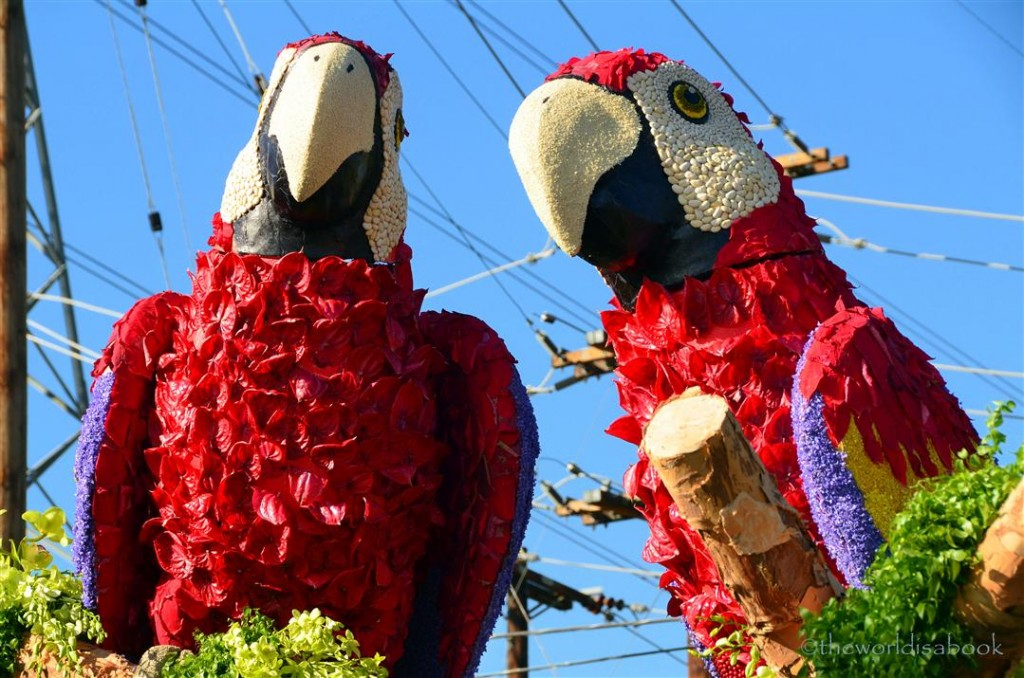 Rose Parade Float 2013 Dole scarlet macaws