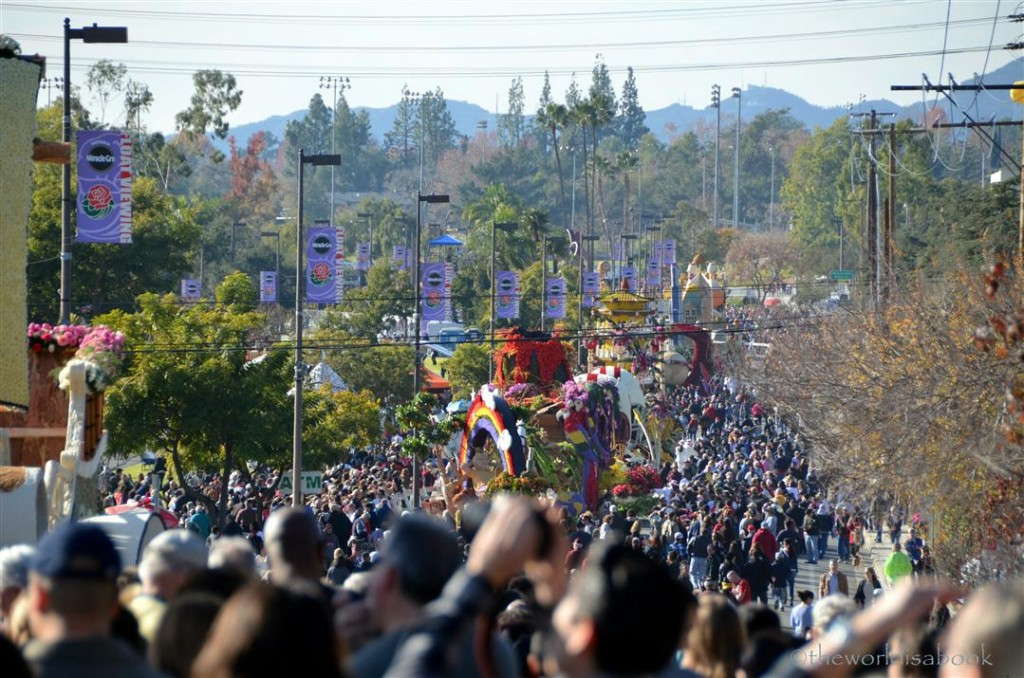 Rose parade float viewing crowd