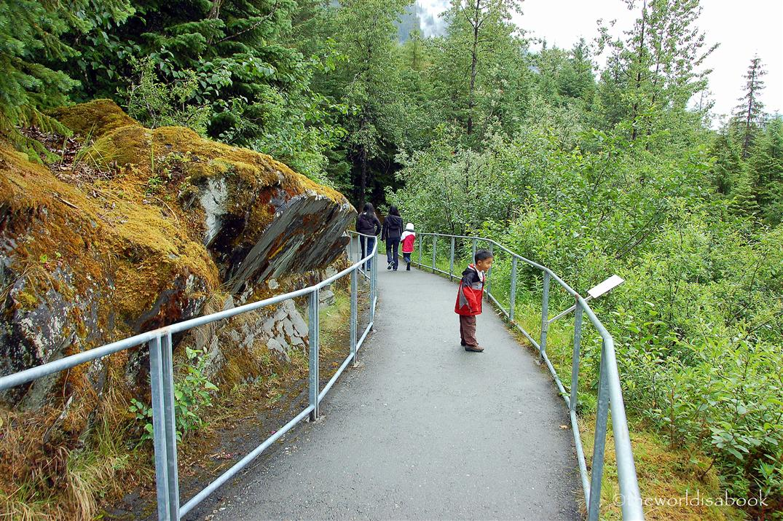 Mendenhall nature trail