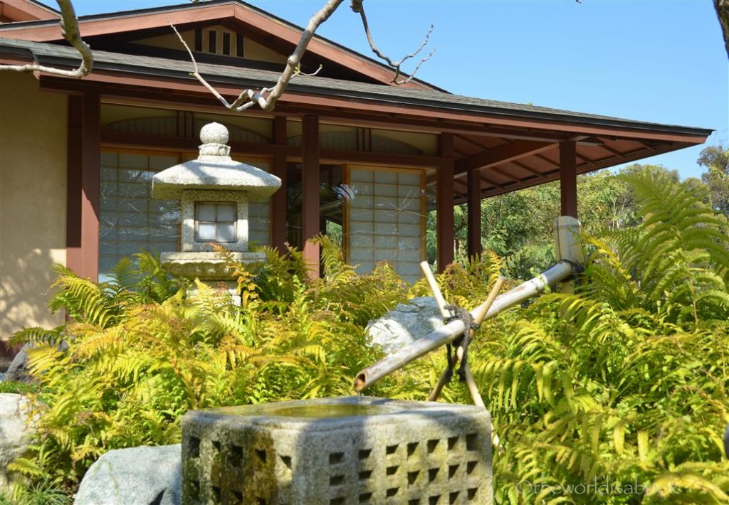 Japanese water basin and stone lantern