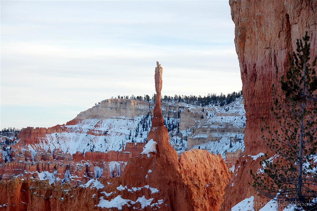 Bryce Canyon pinnacle