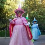 Disney Wordless Wednesday; Flora, Fauna, Fantasy, 15!