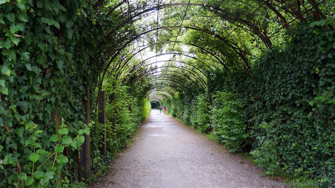Mirabell Gardens Sound of Music hedge