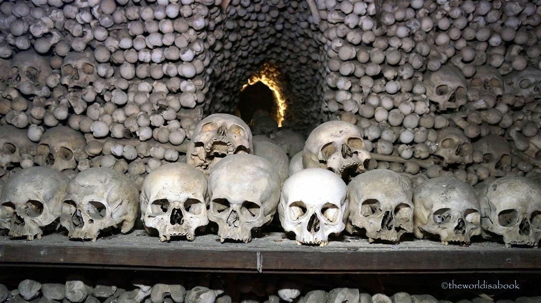 Church of Bones skulls
