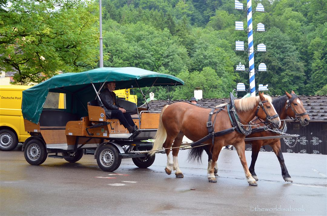 Neuschwanstein horse carriage