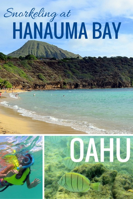 Swimming With The Fishes: Snorkeling At Hanauma Bay Oahu