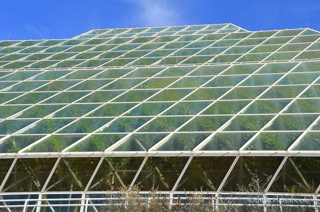 Biosphere 2 Greenhouse